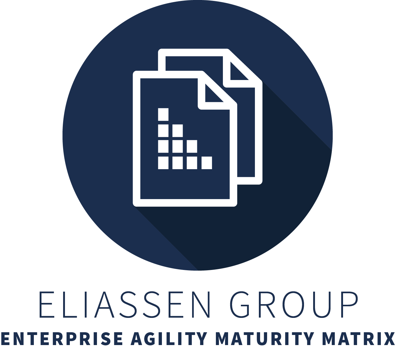 EG-AgileMaturityMatrix-Color.png