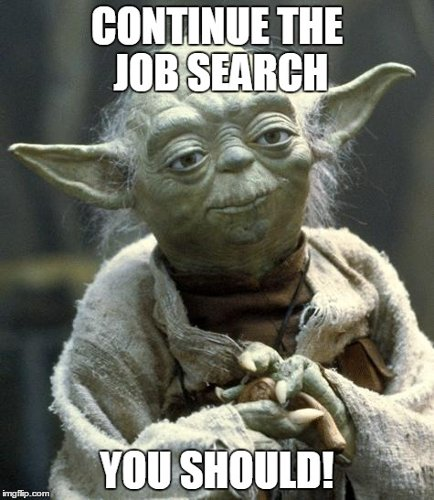Job Search During the Holidays: The Force is With You
